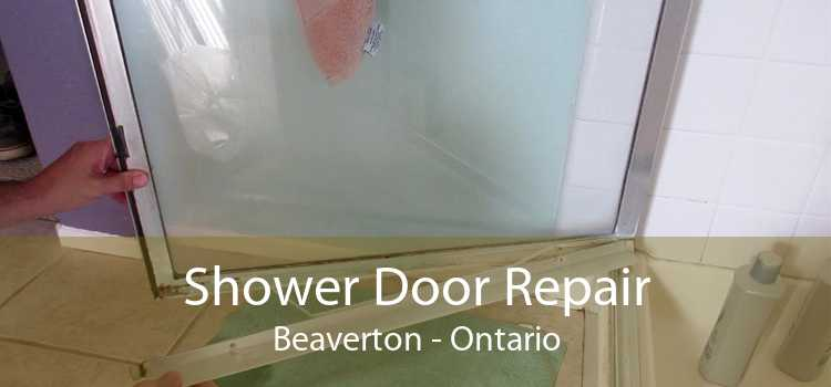 Shower Door Repair Beaverton - Ontario