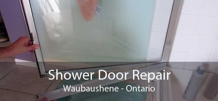 Shower Door Repair Waubaushene - Ontario